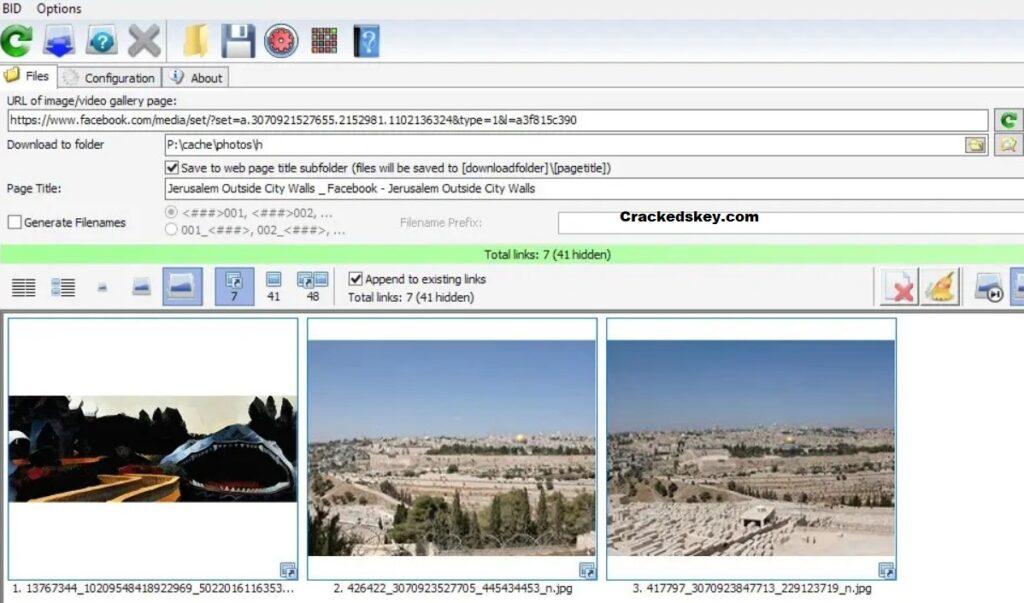 Bulk Image Downloader Key
